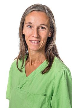 Ingela Carlsson